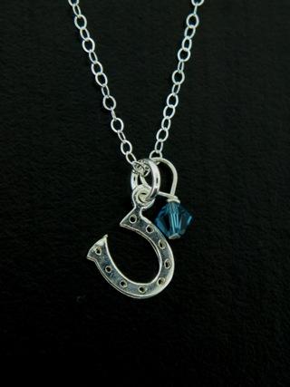 Silver Lucky Horseshoe Necklace